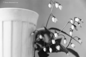 Cup of flowers 2