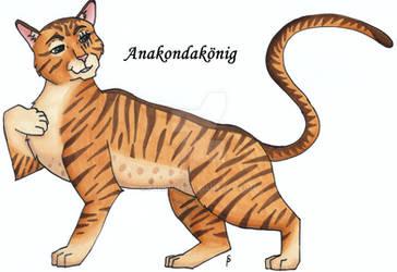 Anacondaking