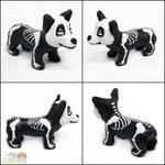Skele-Corgi Pupple