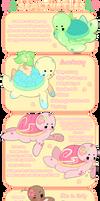 Sealturtles Guide