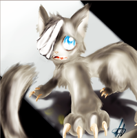 New cat- Ecco by LiChan99