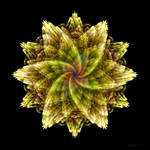APO Flower by TropicalFractals