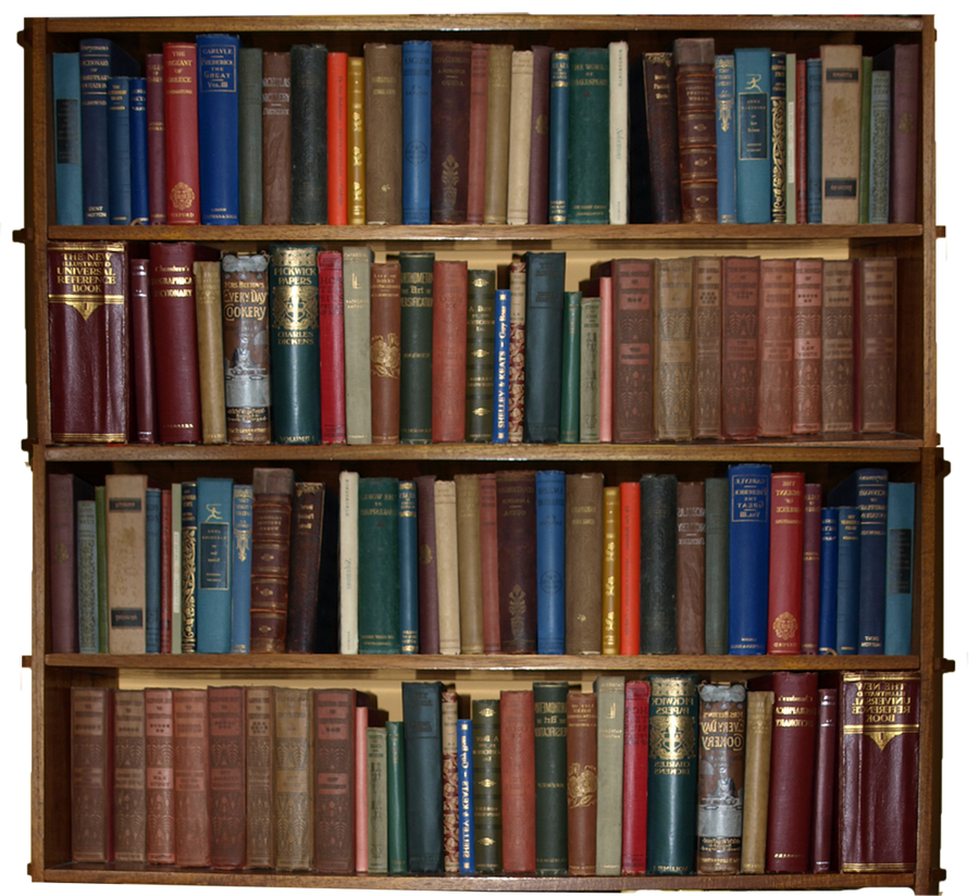 Bookshelves with books - 28 images - book shelves 2 time s f.