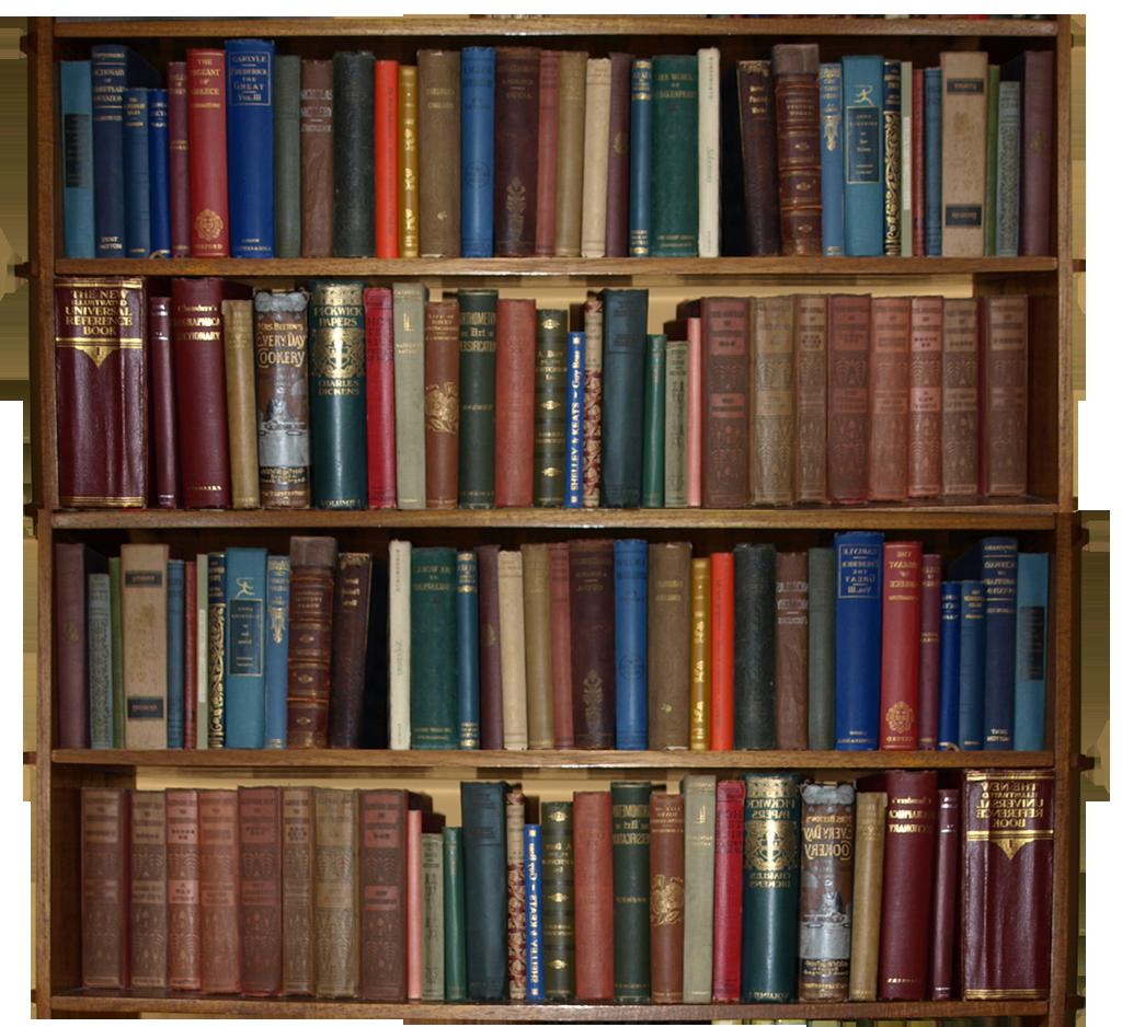 http://fc09.deviantart.net/fs50/f/2009/271/0/7/bookcase_by_marmaladepip.png