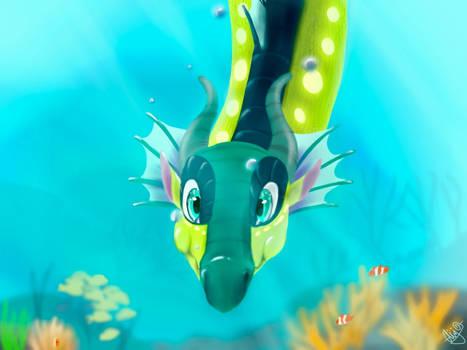Turtle and Kinkajou's dragonet
