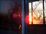 Life through a broken window