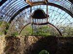 abandoned orangery