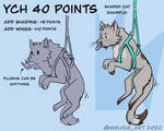 YCH 40 points