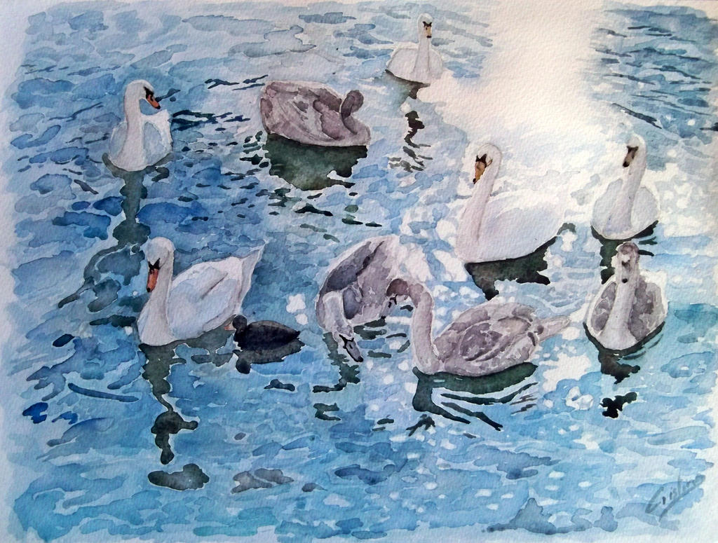 swans 2 by cristineny