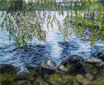 Nature by cristineny