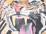 Tiger 2 by HJC87