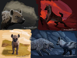 Hyena Color Mood Study by LauraRamirez