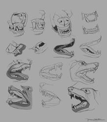 Drawing Exercies 03 - Canines