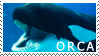Orca Stamp