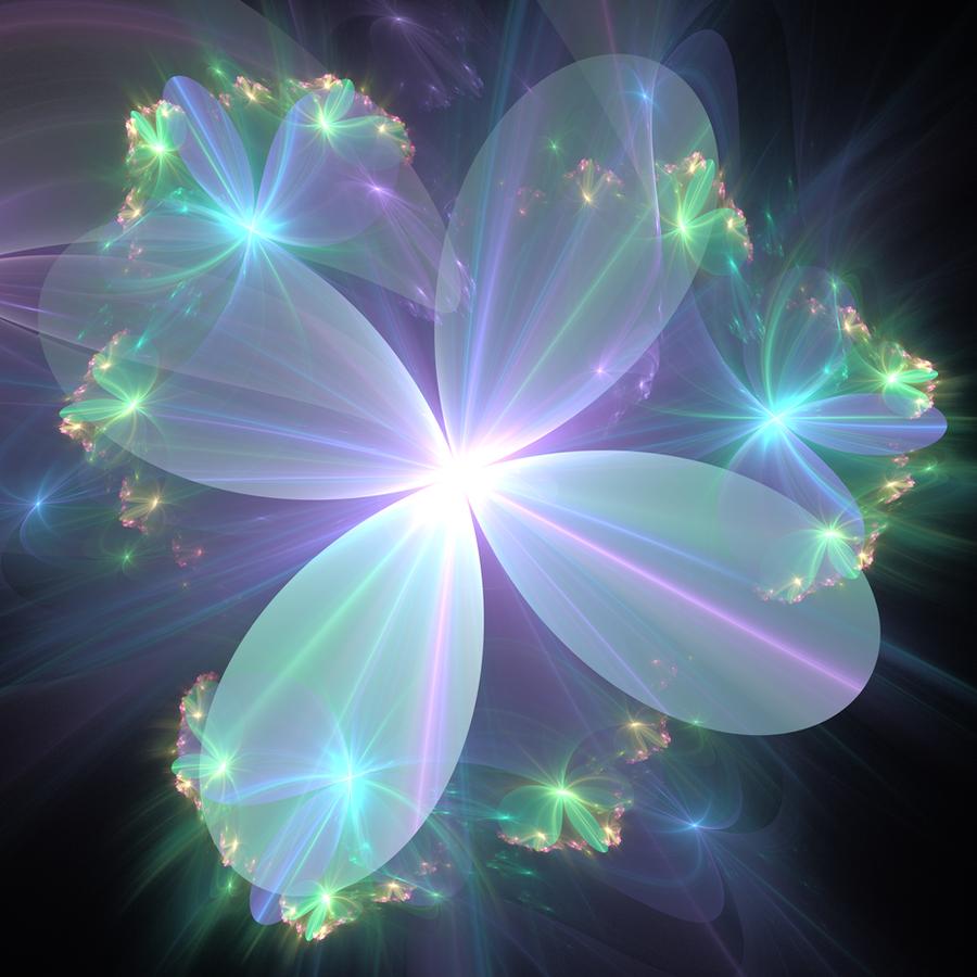 Resultado de imagem para ethereal flowers