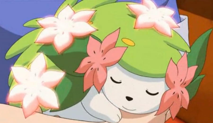 Pokepraat  - Page 3 Shaymin__flower_bearing__by_trainman666-d5bwoqw