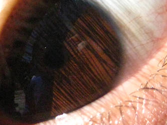 Eyes 08