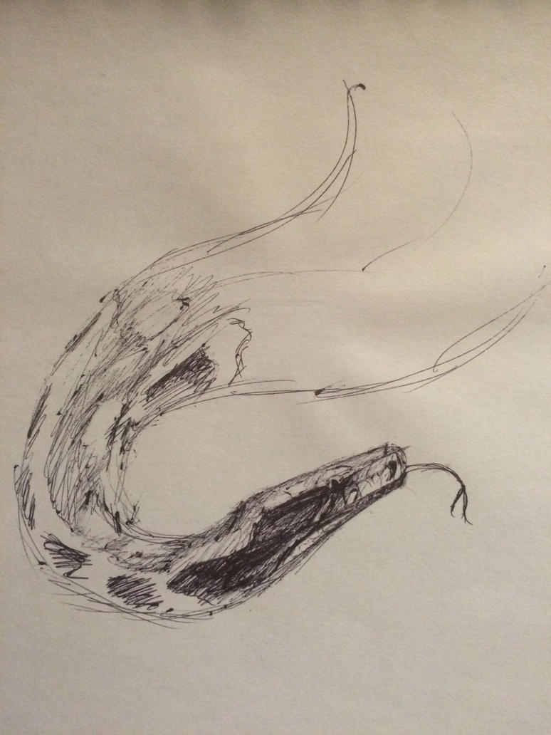 Speed Sketch - Blood Python by mikiayla97
