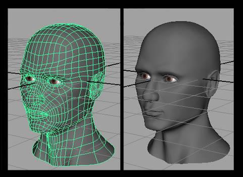 Head_model