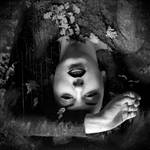Dark side by bubastis2