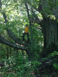 timber man by TrueRageXRT