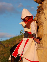 Chateau de Beaufort 8