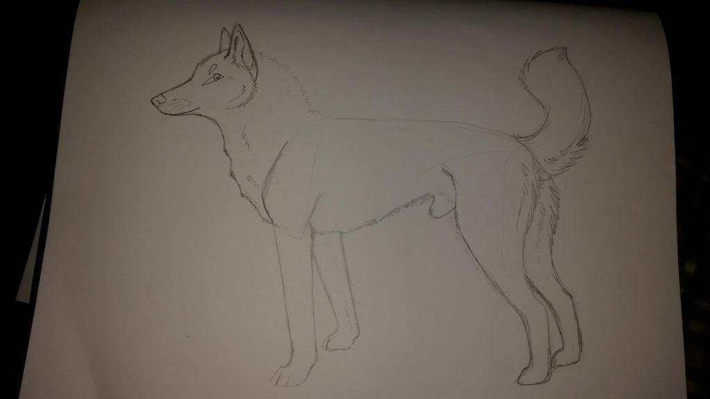 wolfee by teegeetiger