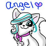 Angel Practice