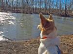 Darby and Hummel Creek1  2052ADJ