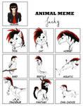 Animal Meme by LunaWolf43