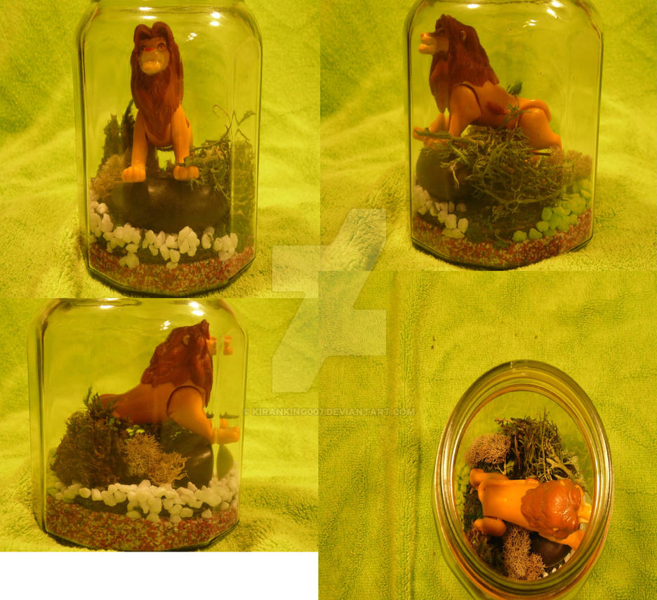 The LionKing simba Habitat Jar by kiranking007