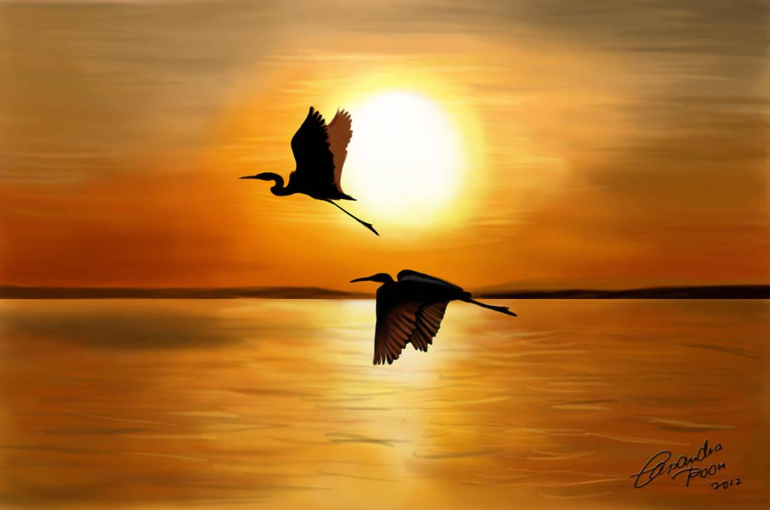 Crane sunrise by CassPoon