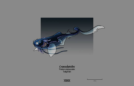 Crepusculopiscidea