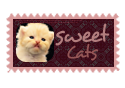 Sweet Cats by shosheta