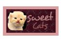 Sweet Cats by shosheta