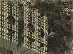 Malcolm fractal art