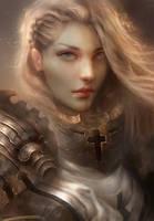 Crusader by Enshanlee