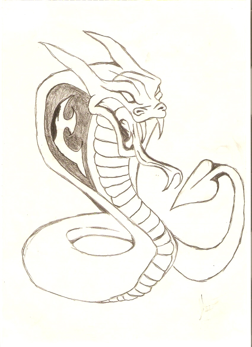 Cobra snake by Bladzia59x on DeviantArt