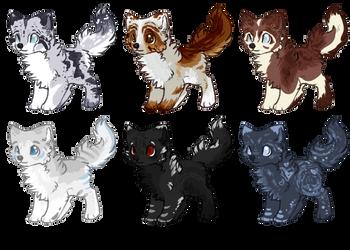 Canine Adopt Sheet [open] by SilverPandorica
