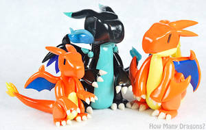 Charizard Family Portrait by HowManyDragons