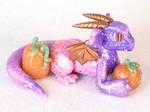 Purple and Pink pumpkin Dragon
