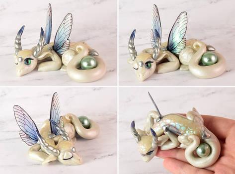 Sleepy White Pearl Fairy Dragon