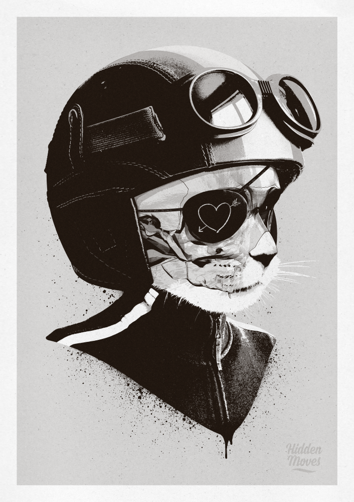 Cat-Racer by hiddenmoves
