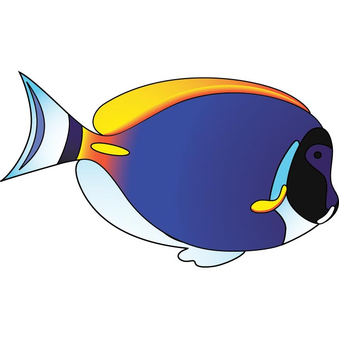 blue fish vector illustration by cgvector on deviantart rh cgvector deviantart com vector fish bones vector fish scales