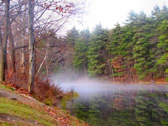 Foggy Autumn Day by craftywench-nh