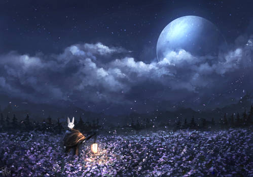 The everlasting night