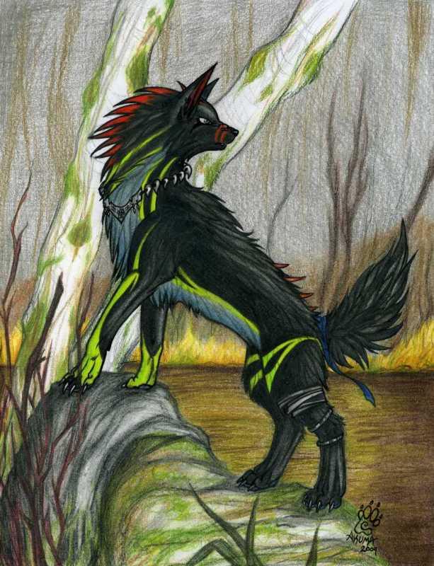 Wolf Demon Akuma by triggertracker on DeviantArt - photo#23