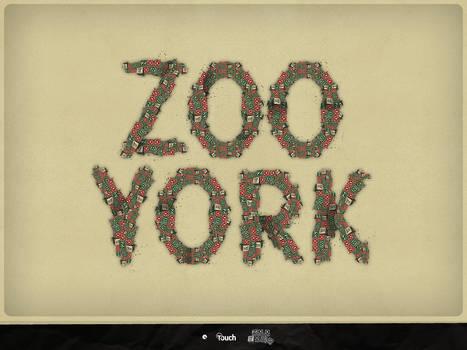 Zoo York Type