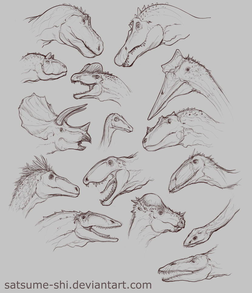 Concept [Dino-Heads] by satsume-shi