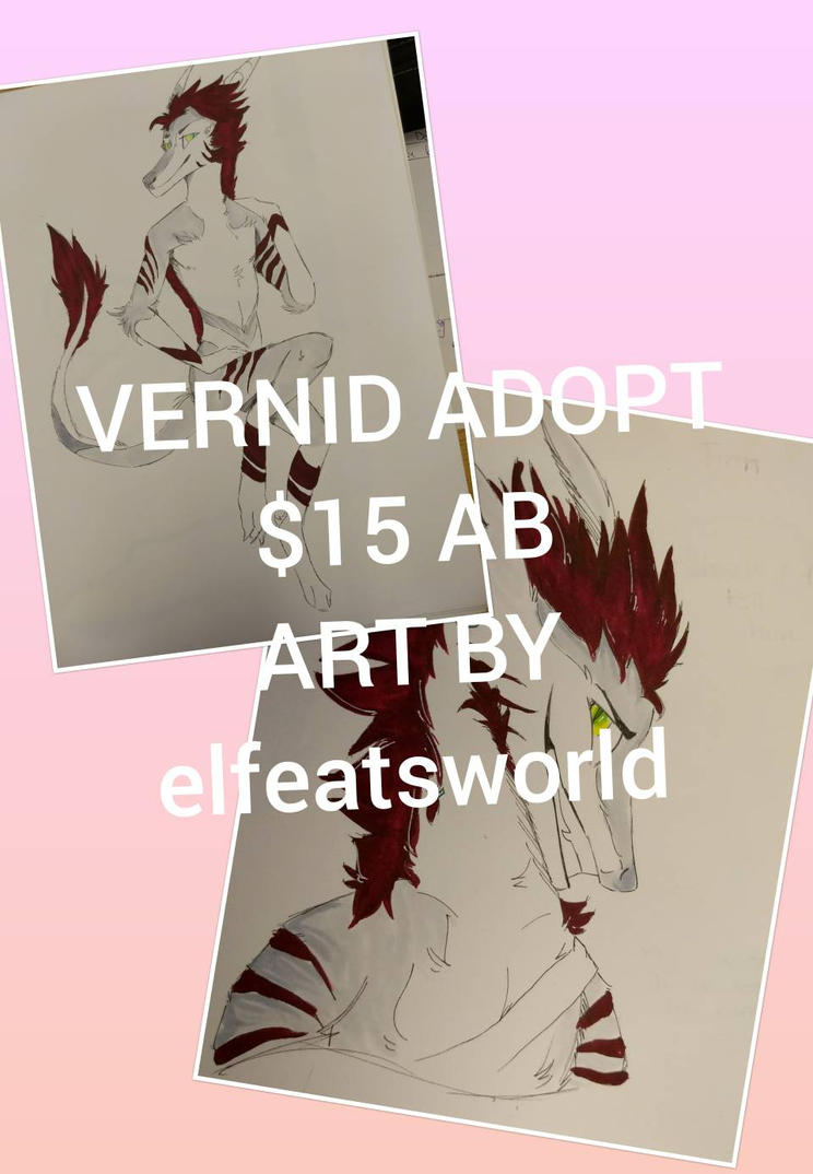 vernid adopt  by ElfEatsWorld2424